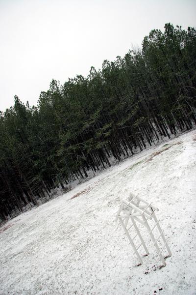 Snow_arbor